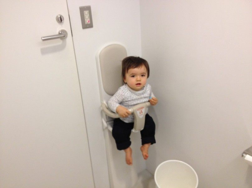 Baby-seat-in-toilets-1024x768